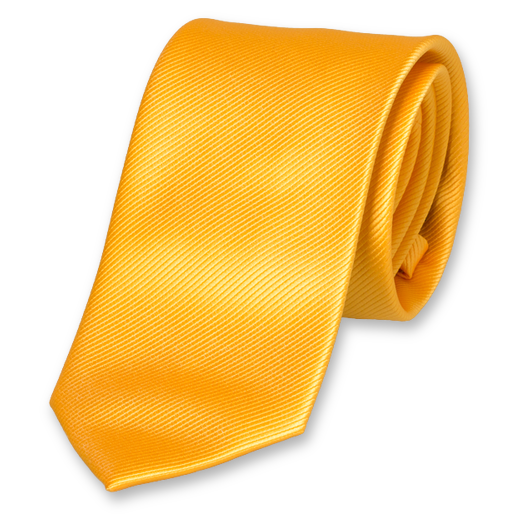 Cravate en Polyester Jaune (1)